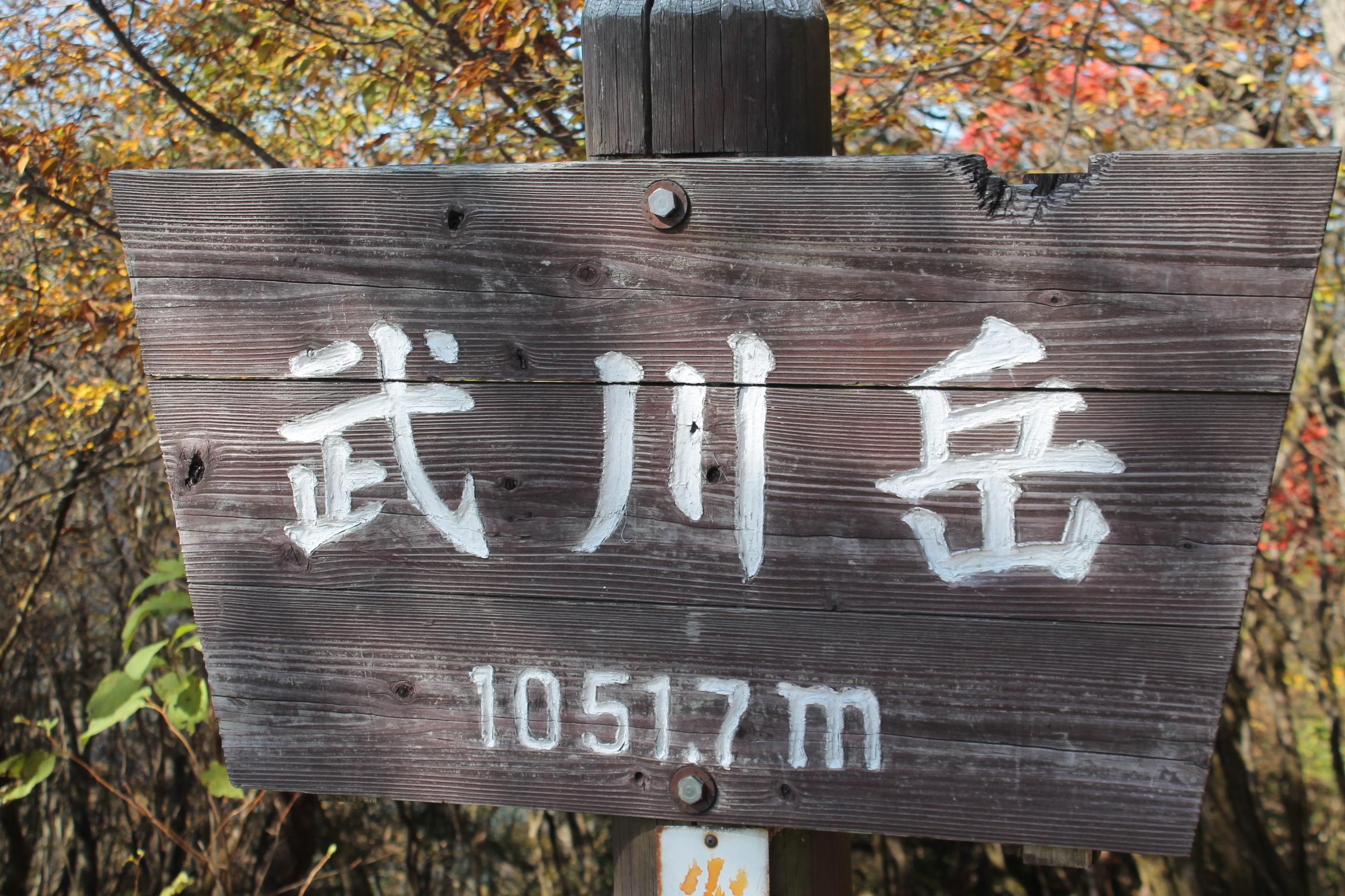 IMG_0005武川岳山頂