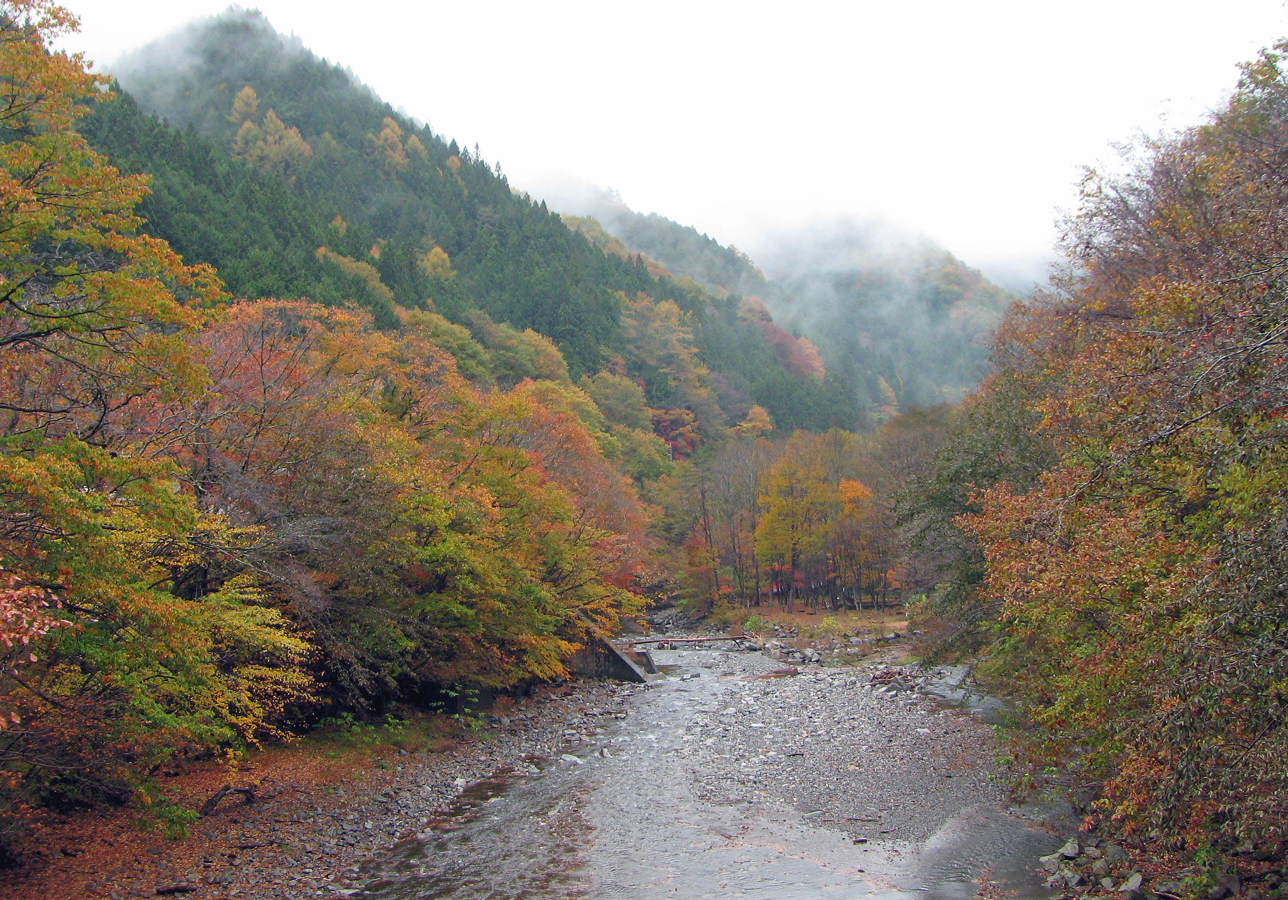 中津川峡谷1