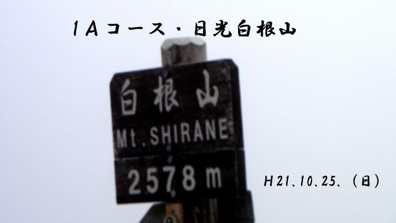 033_???.jpg