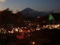 イルミネーションと富士山